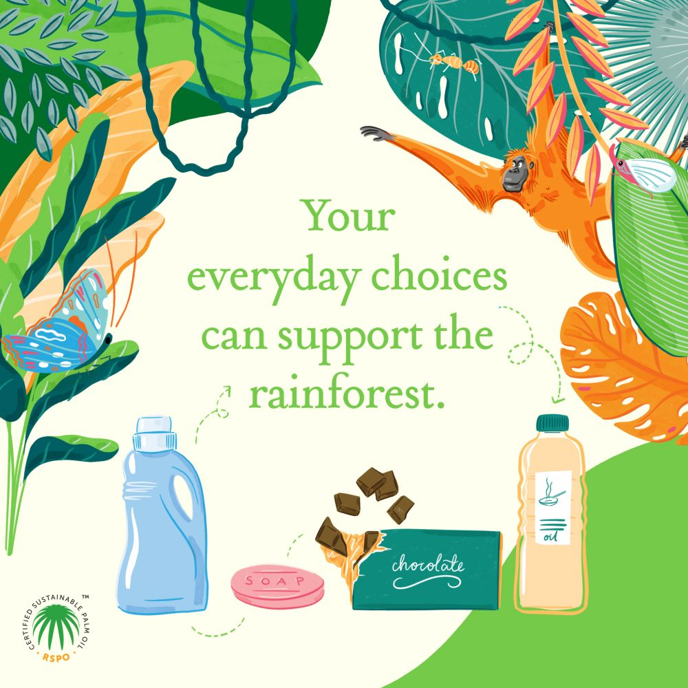 Your every day choices can support the rainforest illustration by jasmine hortop
